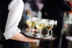 Waitress with dish of champagne and wine glasses Royalty Free Stock Photos