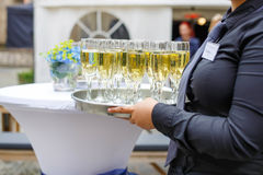 Waitress with dish of champagne and wine glasses Royalty Free Stock Images