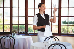 Waitress examining a clean wine glass Royalty Free Stock Photo