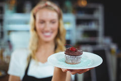 Waitress holding a plate of cupcake Royalty Free Stock Photo