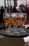 Waitress serving champagne glass. Royalty Free Stock Images