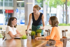 Waitress Serving Customers Stock Photography