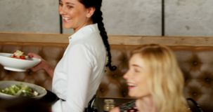 Waitress serving food to friends group 4K 4k stock video