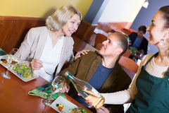 Waitress serving senior customers. Smiling waitress serving senior customers at dinner in cafe Stock Images