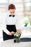 Waitress setting table Stock Image