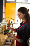 Waitress swiping credit card through credit card reader at counter. In caf Royalty Free Stock Images