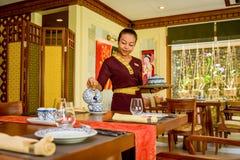 Waitress in the thai restaurant serving tea. Waitress wearing uniform in the thai restaurant serving tea in Maldives stock photos