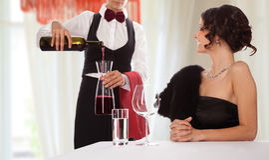Waitress uniform restaurant guest stock photo