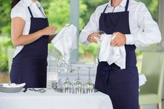 Waitress and waiter cleaning glasses in restaurant stock image