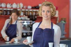 Waitress waiter working at cafe bar restaurant royalty free stock image
