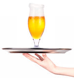 Waitresses holding tray with light beer isoalted Royalty Free Stock Photo
