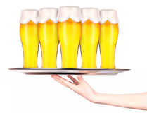 Waitresses holding tray with light beer isoalted Royalty Free Stock Images