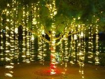 Wakacje światła sznurki w drzewie obraz royalty free