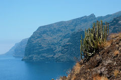 Wakacje blisko oceanu na Tenerife, kanarek, Hiszpania, Europa Fotografia Stock