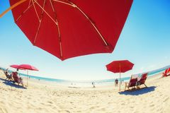 Wakacje: Czerwoni parasole i holów krzesła na złotej plaży obok Obraz Stock