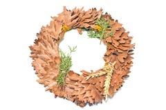 wakacje odizolowywał wianku liść pełnia lata dębowego symbolu biały wianek Obrazy Royalty Free