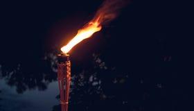 Wakacje plenerowy płonąca ilustracyjna pochodnia zdjęcia royalty free