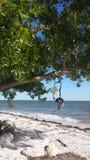 Wakacje przy Północnymi Captiva wyspami Fotografia Royalty Free