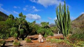 Wakacje w Hawaje na tropikalnym wakacje zdjęcia stock