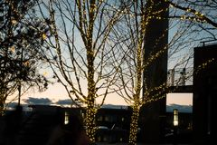 Wakacje Zaświeca w w centrum Lakewood Kolorado przy półmrokiem Zdjęcie Stock