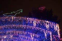 Wakacji światła i latanie nietoperze Fotografia Stock