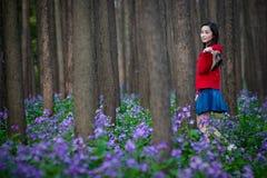 wakacyjna wiosna Zdjęcie Stock