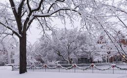 Wakacyjna zima śniegu scena. Zdjęcia Royalty Free