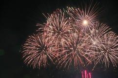 Wakacyjni fajerwerki w parku obraz royalty free
