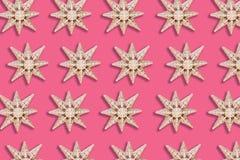 Wakacyjny gwiazdowy wzór zdjęcie royalty free