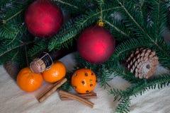 Wakacyjny pojęcie: rożki, tangerine, szampańska butelka, pikantność i obrazy royalty free