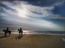 Wakacyjny wjazd z jeździeckimi koniami na dennym brzeg podczas zmierzchu obraz royalty free