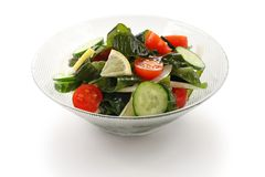 Wakame seaweed salad Royalty Free Stock Image