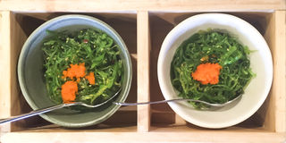 Wakame seaweed salad. Picture of sweet and juicy wakame seaweed salad topped with ebiko Stock Image