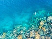 在潜航在珊瑚礁热带加勒比海,土耳其玉色水的人下的空中上面 印度尼西亚Wakatobi群岛, 库存图片