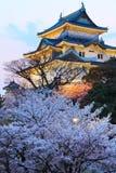 Wakayama kasztel z Sakura zdjęcie stock