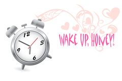 Wake up, Honey! Stock Image