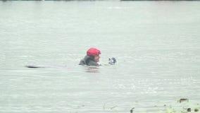 Wakeboarder fällt Landungswasseroberfläche, nachdem er Trampoline gesprungen hat stock video footage