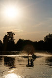 Wakeboarder silhouette against the sunset Stock Images