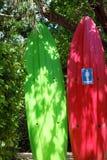 Wakeboards как туалет Стоковая Фотография