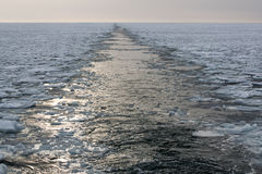 Wakes in the icy sea Royalty Free Stock Photography