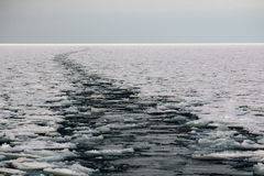Wakes in the icy sea Stock Photography
