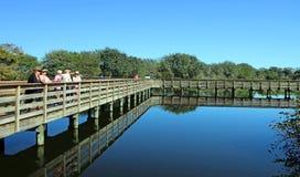 Wakodahatchee-Sumpfgebiete stockbild