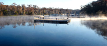Wakulla Springs Swimming Area Stock Images