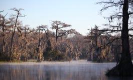 Wakulla suelta niebla de la mañana Imagenes de archivo