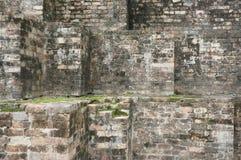 wal生苔砖的石头 库存图片