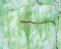 wal的绿色被绘,损坏的表面 库存照片