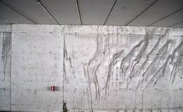 Wal concreto Fotografie Stock Libere da Diritti