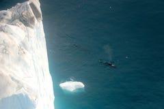 Wal, der in einen Ilulissat-Mitternacht mit Boot von der Vogelperspektive aufpasst stockbilder