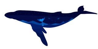 Wal in der Seelandschaft Lizenzfreie Stockfotos