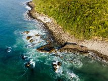 Wal-Endstück Raglan Neuseeland stockbilder